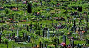 Кладбище «Северное»